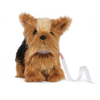 Cachorrito Yorkshire Terrier